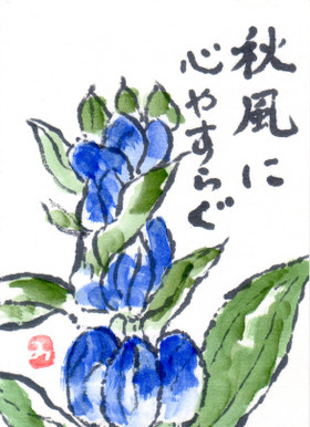 Img057
